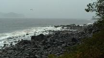 Storm, Wind, Rain, Rocky Beach, Birds, And Waves.