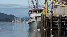 Commercial Fishing Boat Unloading.