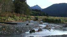 A Small Stream Estuary And Wetlands
