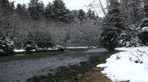 Winter Scene. A Coastal Stream In Southeast Alaska.