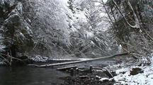 Winter Scene. A Mountain Stream & Snow.