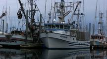 A Pan Of A Line Of Commercial Fishing Boats.