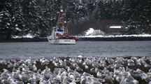 U.S.Coast Guard Arrives For The Sitka Sound Sac Roe Herring Fishery