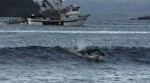 Commercial Fishing Boat & Winter Surfers