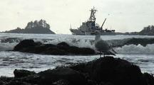 Coast Guard Cutter, Surf & Gull