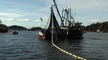 Commercial Fishing: Purse Seine & Net