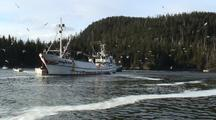 Commercial Fishing: Fish Tenders