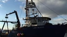 Commercial Fishing: Fish Tender & Nets (Sunset)