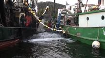 Commercial Fishing: Seine Nets & Fish