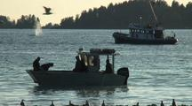 Humpback Whales & Fishing For Herring/ Sitka Sound Sac Roe Herring Fishery
