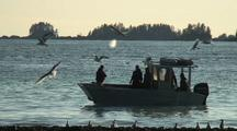 Humpback Whales & Alaska Natives  Fishing For Herring/ Sitka Sound Sac Roe Herring Fishery