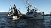 Commercial Fishermen Working A Purse Seine Net