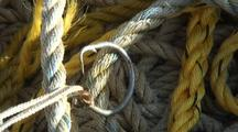 Circle Hook For A Halibut Long Line