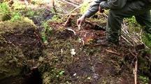 Bones: Hiker Finds  Bones From A Winter Kill (Deer)