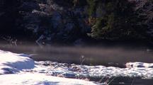Fog Drifts Down A Coastal Stream