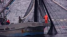 Hauling In A Purse Seine Net