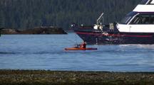 Cruise Ship And Kayaker