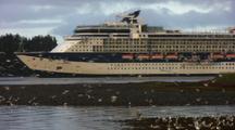 Cruise Ship And Gulls