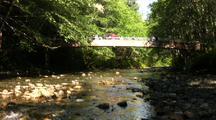 People On Bridge Above Salmon Stream