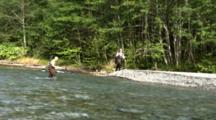 Fishermen Hike Across Stream In Wilderness
