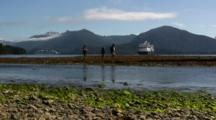 People Watching Salmon In A Stream, Cruise Ship In Distance
