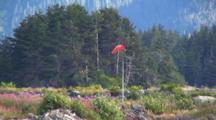 Wind Sock On Landing Strip