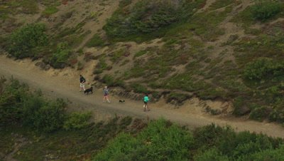 People Hike with Dogs on Trail in Alaska