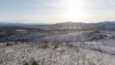 UHD aerial of interior boreal forest in winter at sunrise