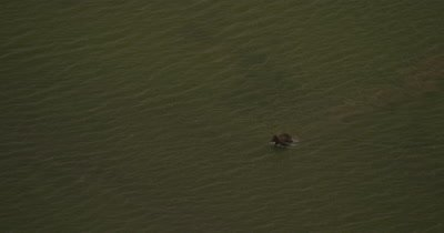 Aerial,Bears Cross Shallow River,Zoom Out