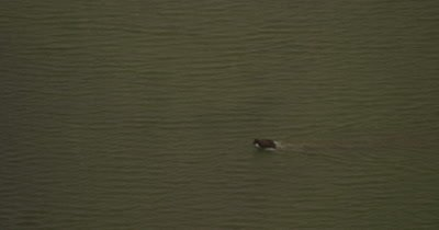 Aerial,Bears Cross Shallow River,Zoom In