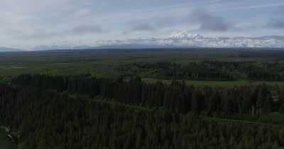 View over Evergreen Forest to Wide View of Snow-Capped Mountains In Alaska