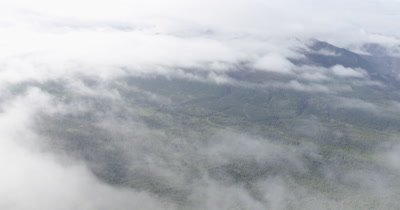 Aerial Above Low Clouds Over Coniferous Forest In Alaska