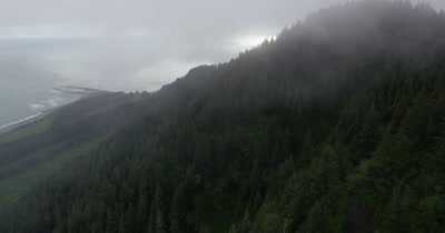 Aerial Through Low Clouds Over Coniferous Forest and Coast