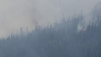 Aerial Above Alaska Wildfire with smoke