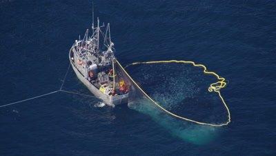 Aerial Coastal Alaska,fishing boat (purse seine?) with net full of fish