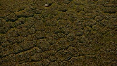 Aerial Alaska,Polygonal soil patterns of tundra