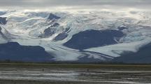 Sandhill Crane Feed In Front Of Glaciers Wild Scenic Landscape Glacial Migration Alaska