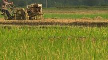 Tilt Up From Rice Field To Tractor Driving In Rice Farm China Chinese Industrialization