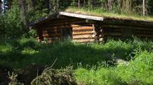 Interior Alaska River Yukon River Log Cabin In Wilderness With Moss Roof Reveal