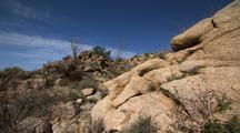Wide Shot Desert Rocks And Vegetation
