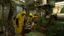 Workers Feed Cleaned Salmon Into A Machine For Canning At Fish Processing Plant