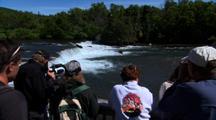 Toursim Viewing Brown Bear Grizzly Bear  Alaska Ecotourism Travel Wildlife Viewing Nature