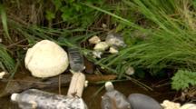Flotsam And Jetsom Plastic Trash On Alaska Peninsula Beach