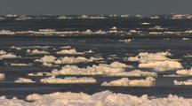 Ice Floes Move On Ocean Currents And Swell
