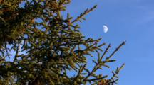 Half Moon In Blue Sky Northern Hemisphere Alaska