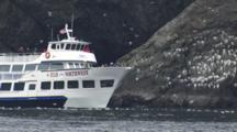 Kenai Fjords Tour Boat Enters Frame To Motor Near Seabird Colony Rookery