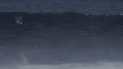 Jaws - big wave surfing- lineup with surfers paddling