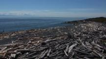 Puget Sound - Beach And Logs On San Juan Island, Washington