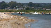 A Beach With An Active Tern Colony And Weekend Boaters