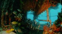 Under Wet Porch, Aquarius Reef Base, Key Largo, Florida